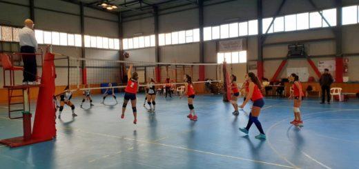 seconda divisione VolleyClubLeoni